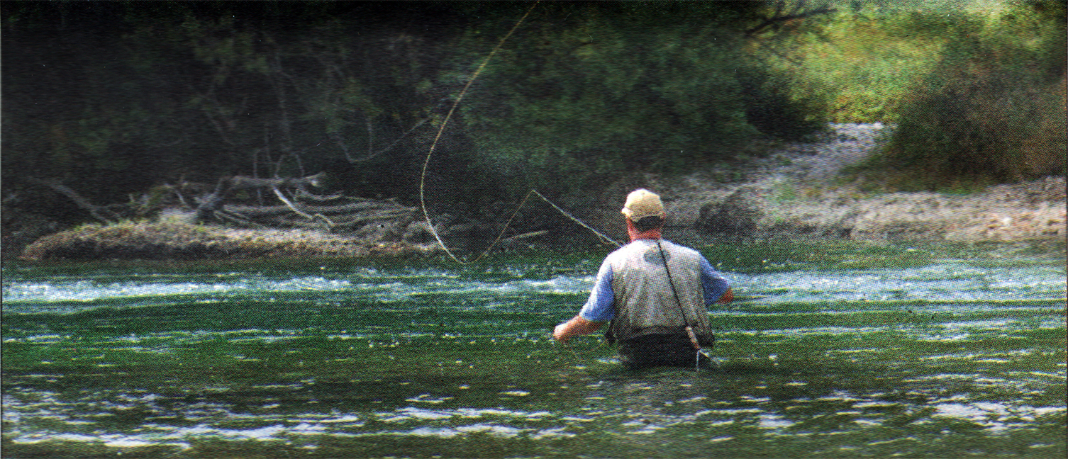 lure-of-the-stream