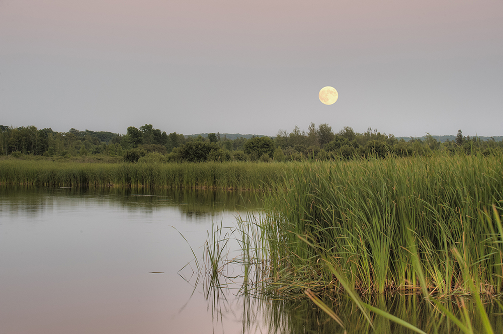 Moonrise photo by Steve Loveless.